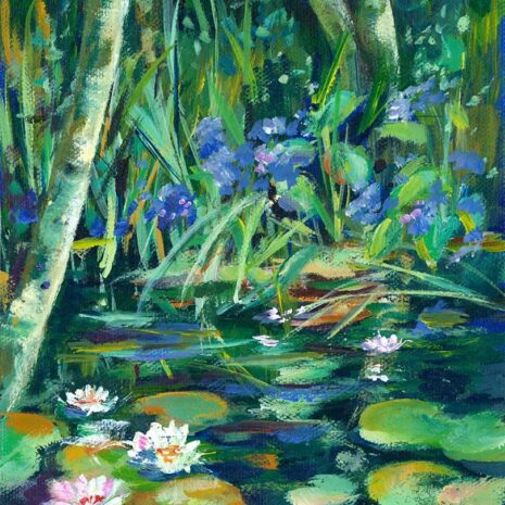 Forest Lilly Pond